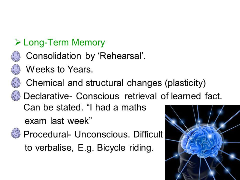  Long-Term Memory Consolidation by 'Rehearsal'. Weeks to Years. Chemical and structural changes (plasticity) Declarative- Conscious retrieval of lear