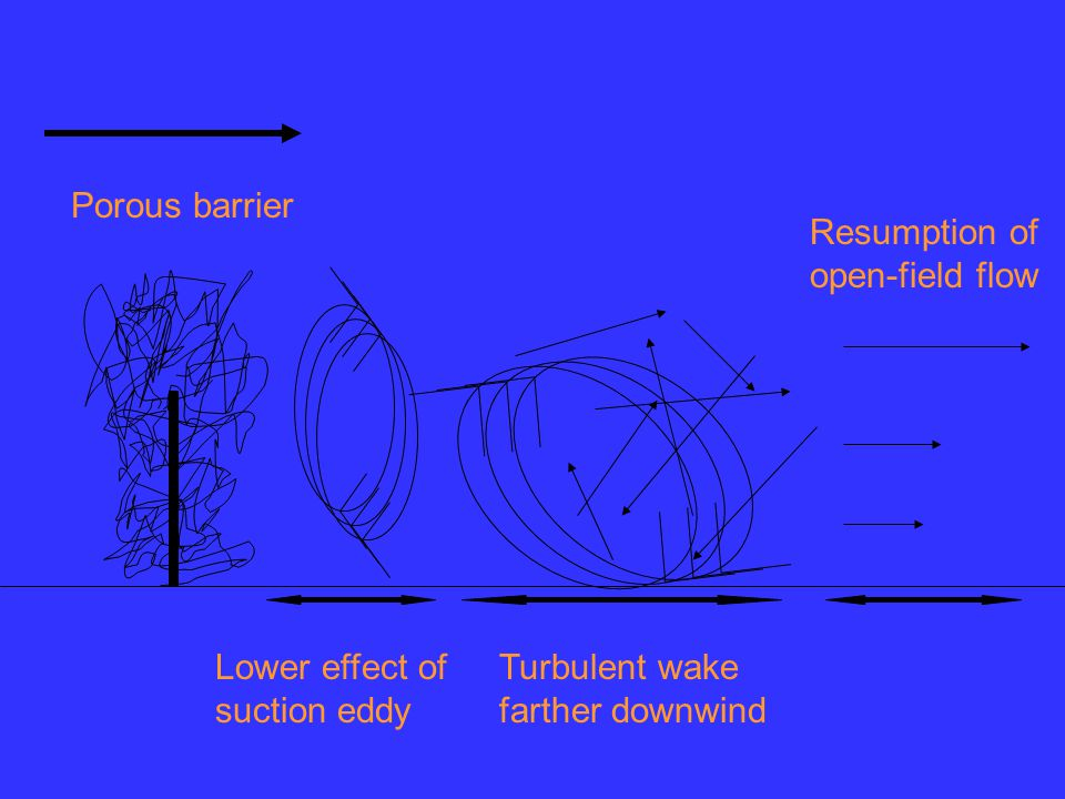 Lower effect of suction eddy Turbulent wake farther downwind Resumption of open-field flow Porous barrier