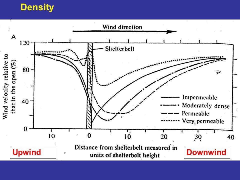 Density UpwindDownwind
