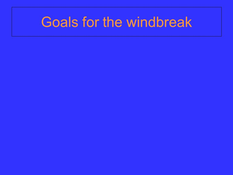 Goals for the windbreak