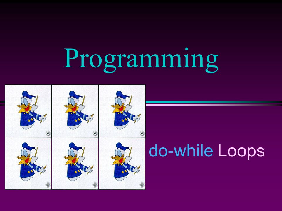 do-while Loops Programming