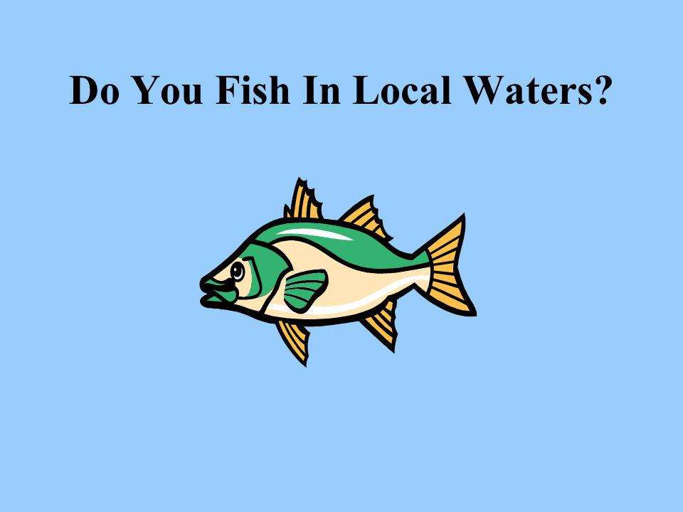 Do You Fish In Local Waters