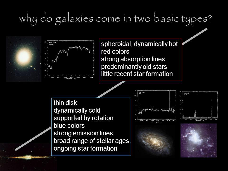 why do galaxies come in two basic types.
