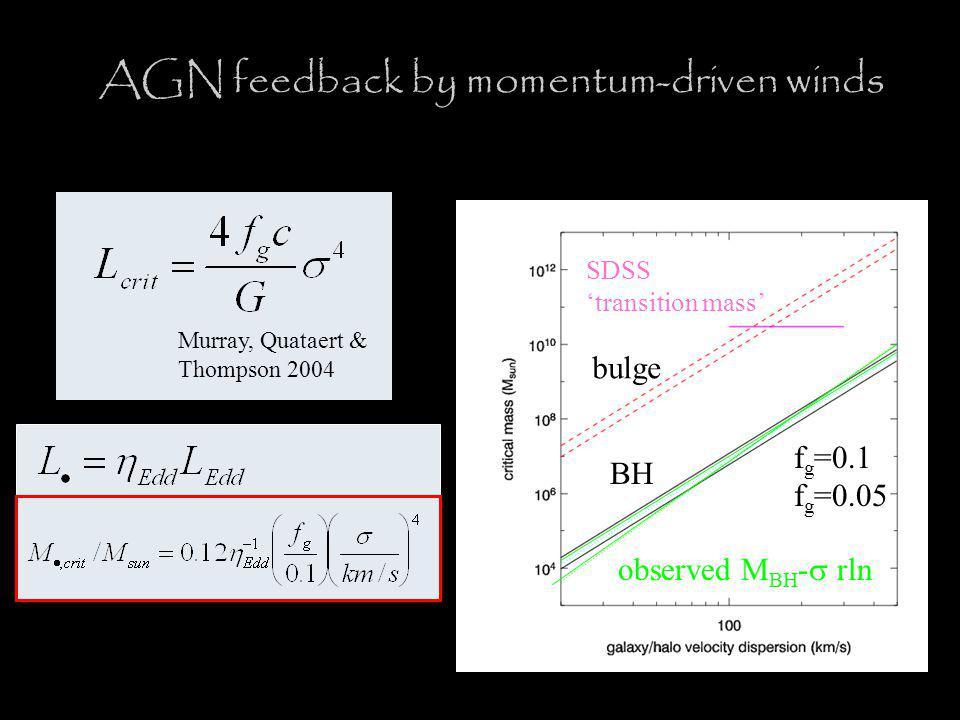 AGN feedback by momentum-driven winds Murray, Quataert & Thompson 2004 BH bulge SDSS 'transition mass' f g =0.1 f g =0.05 observed M BH -  rln