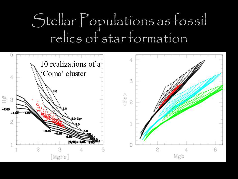 Stellar Populations as fossil relics of star formation 10 realizations of a 'Coma' cluster