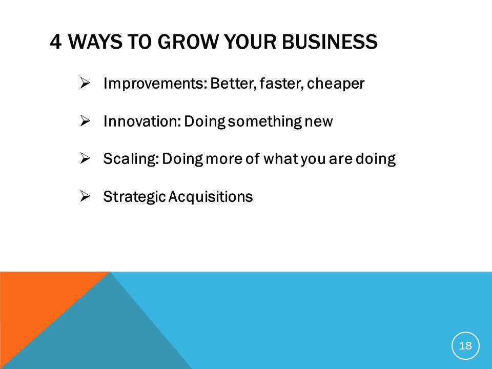 4 WAYS TO GROW YOUR BUSINESS  Improvements: Better, faster, cheaper  Innovation: Doing something new  Scaling: Doing more of what you are doing  Strategic Acquisitions 18