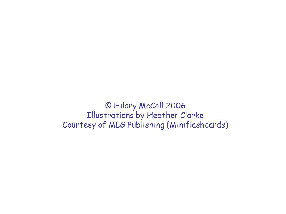 © Hilary McColl 2006 Illustrations by Heather Clarke Courtesy of MLG Publishing (Miniflashcards)