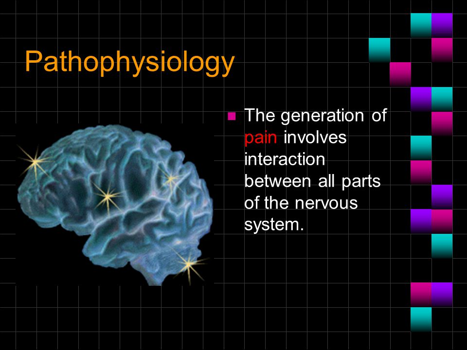 Pathophysiology n The generation of pain involves interaction between all parts of the nervous system.