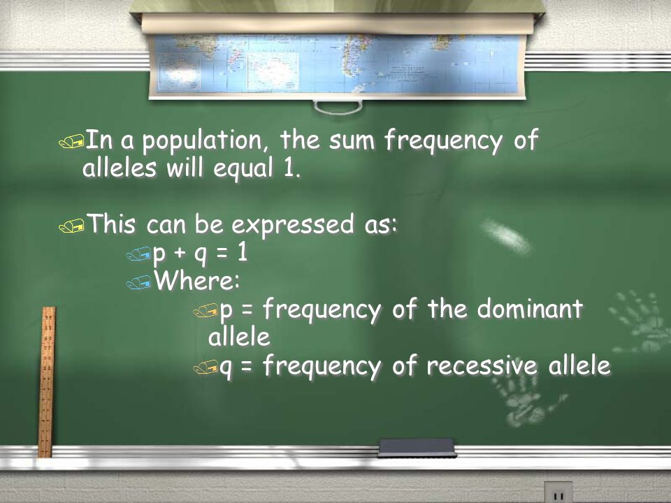Hardy-Weinberg Equation / p 2 + 2pq + q 2 = 1 / Where: / p 2 = frequency of individuals homozygous for the dominant allele / 2pq = frequency of heterozygous individuals / q 2 = frequency of individuals homozygous for the recessive allele / p 2 + 2pq + q 2 = 1 / Where: / p 2 = frequency of individuals homozygous for the dominant allele / 2pq = frequency of heterozygous individuals / q 2 = frequency of individuals homozygous for the recessive allele