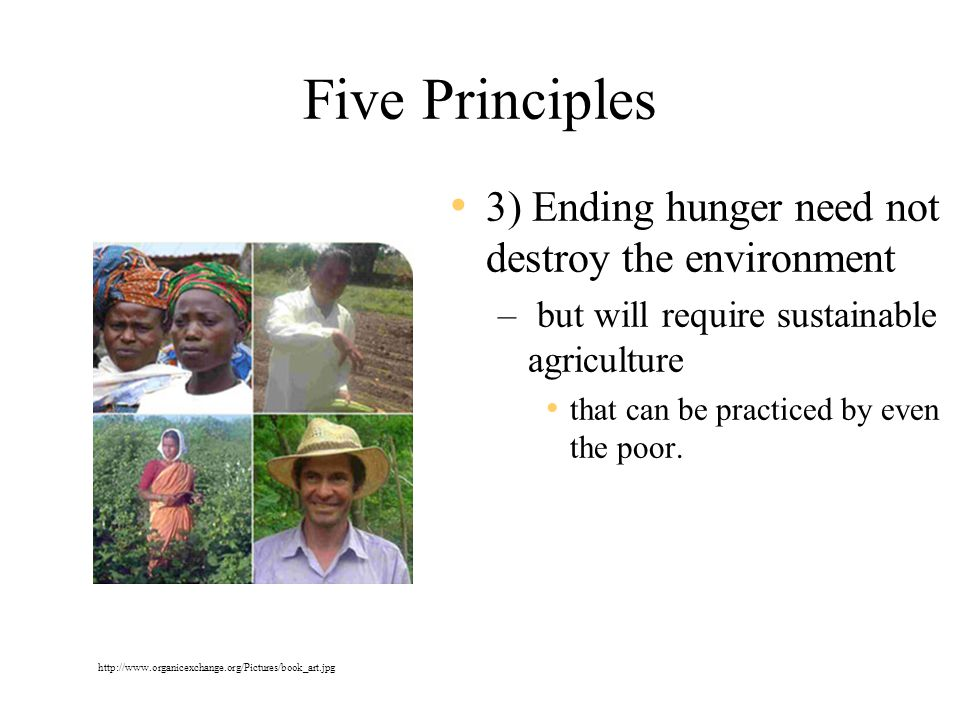 Five Principles 3) Ending hunger need not destroy the environment – but will require sustainable agriculture that can be practiced by even the poor.