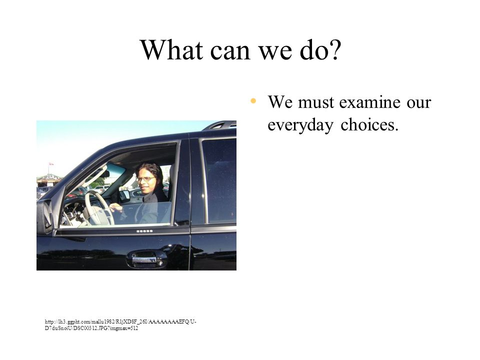 What can we do. We must examine our everyday choices.