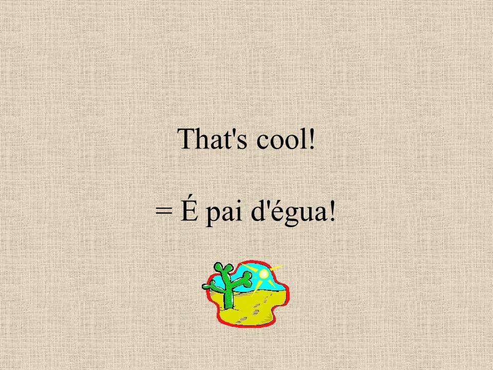 That s cool! = É pai d égua!