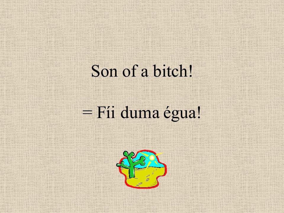 Son of a bitch! = Fíi duma égua!