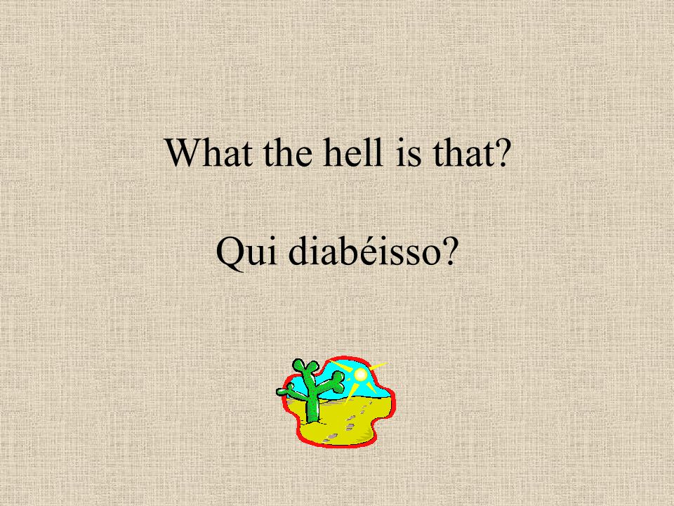 What the hell is that Qui diabéisso