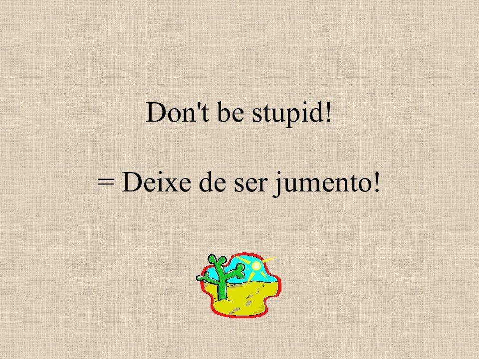 Don t be stupid! = Deixe de ser jumento!