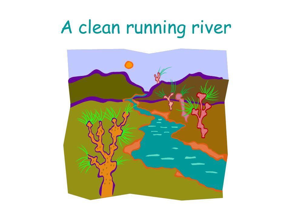 A clean running river
