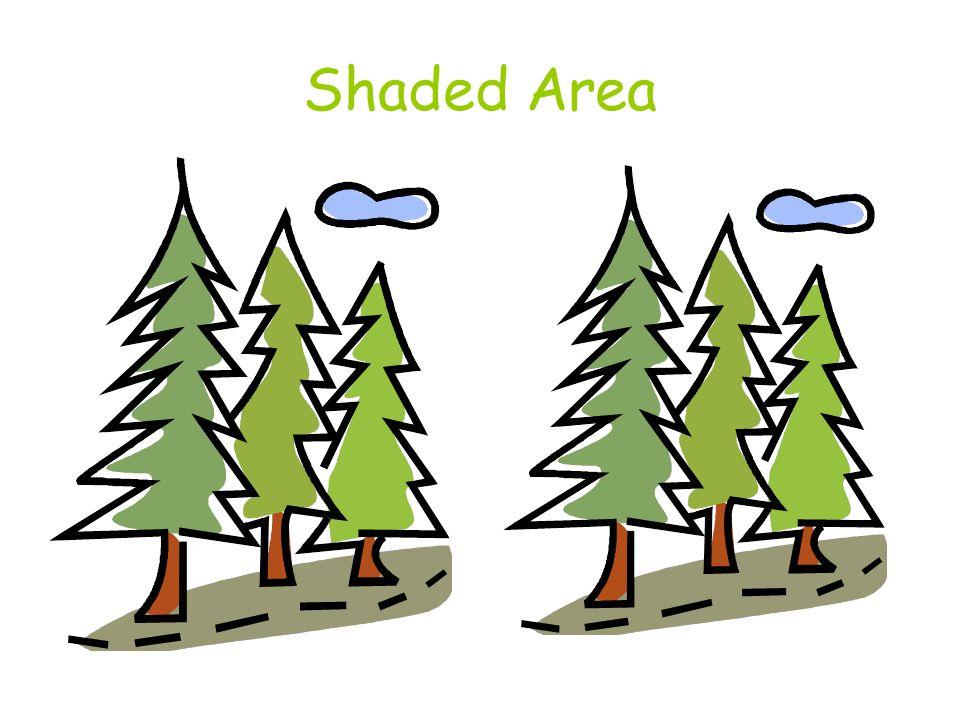Shaded Area
