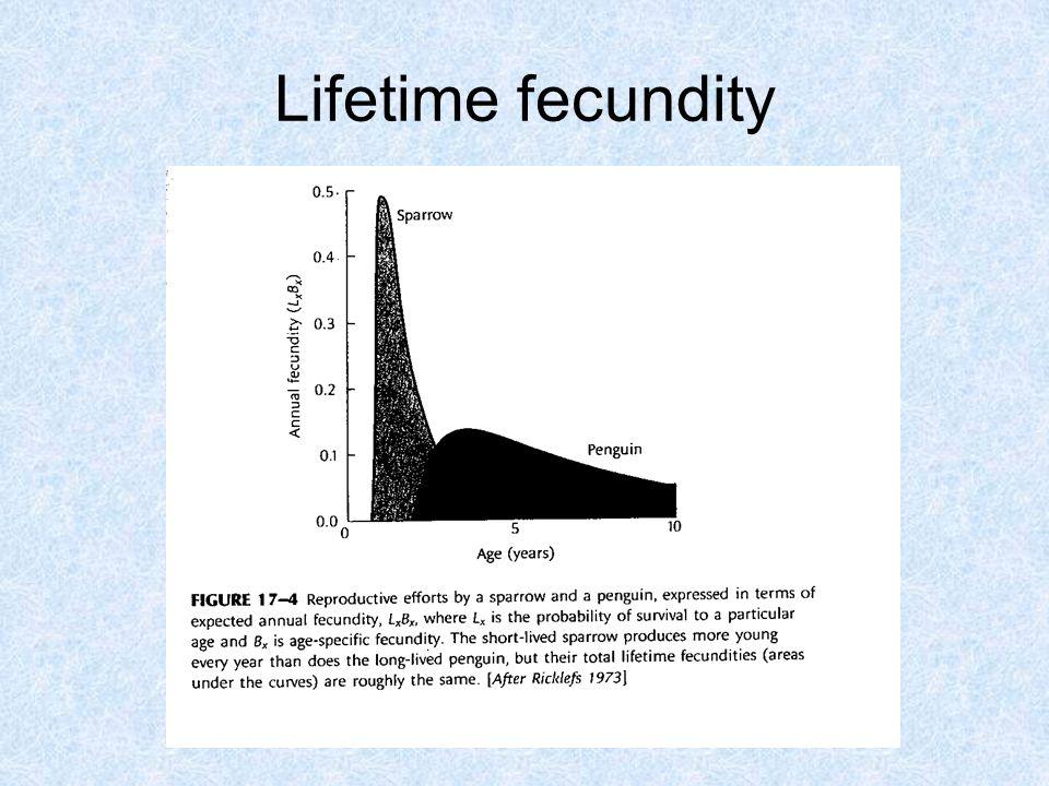 Lifetime fecundity