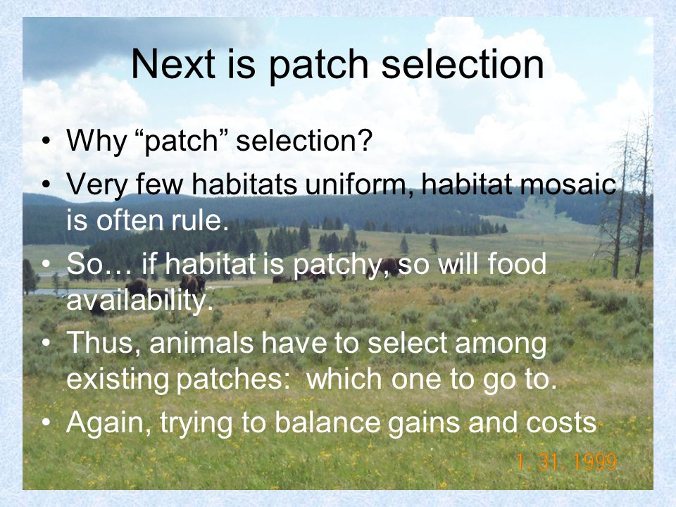 Next is patch selection Why patch selection.