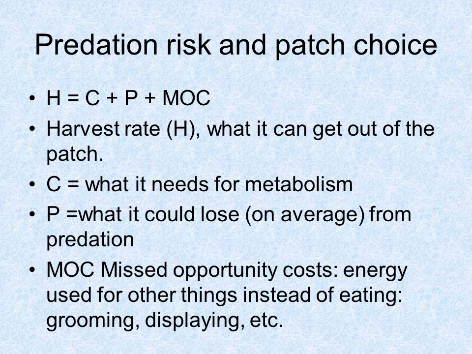 Predation risk and patch choice H = C + P + MOC Harvest rate (H), what it can get out of the patch.