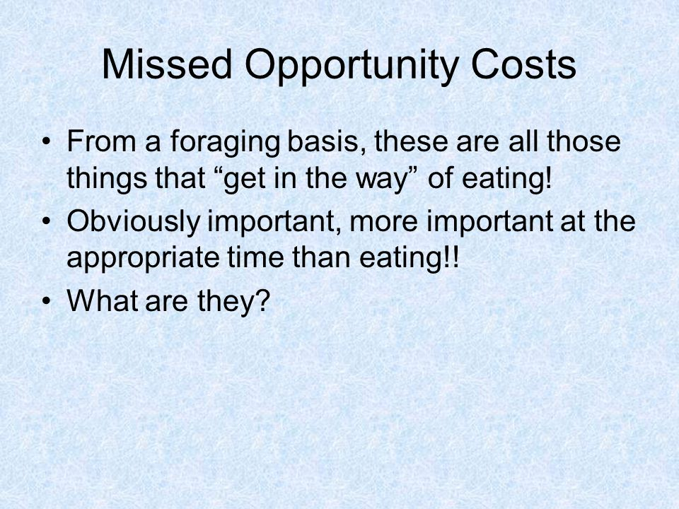 Missed Opportunity Costs From a foraging basis, these are all those things that get in the way of eating.