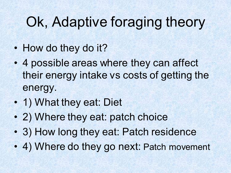 Ok, Adaptive foraging theory How do they do it.