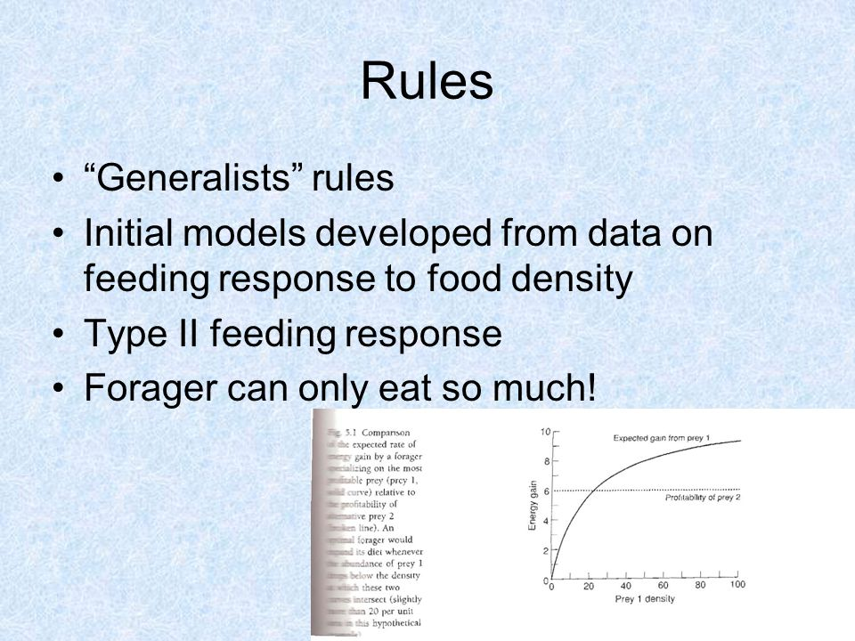 Rules Generalists rules Initial models developed from data on feeding response to food density Type II feeding response Forager can only eat so much!