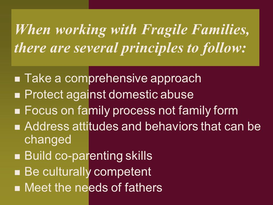 When working with Fragile Families, there are several principles to follow: Take a comprehensive approach Protect against domestic abuse Focus on fami