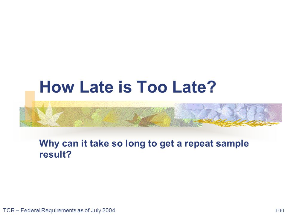 TCR – Federal Requirements as of July 2004 100 How Late is Too Late.
