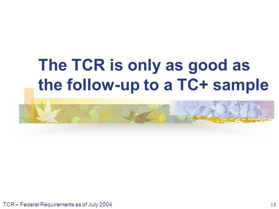 TCR – Federal Requirements as of July 2004 18 The TCR is only as good as the follow-up to a TC+ sample
