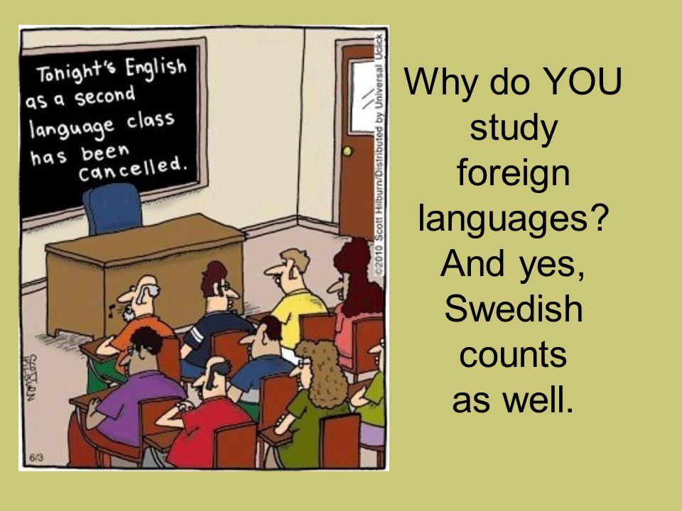 Why do YOU study foreign languages And yes, Swedish counts as well.