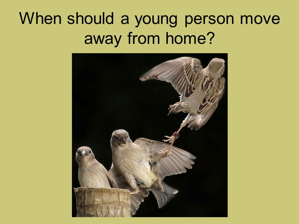 When should a young person move away from home