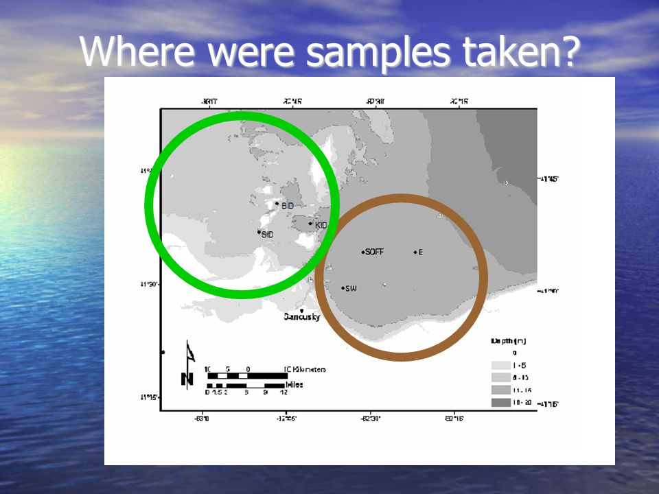 Where were samples taken?