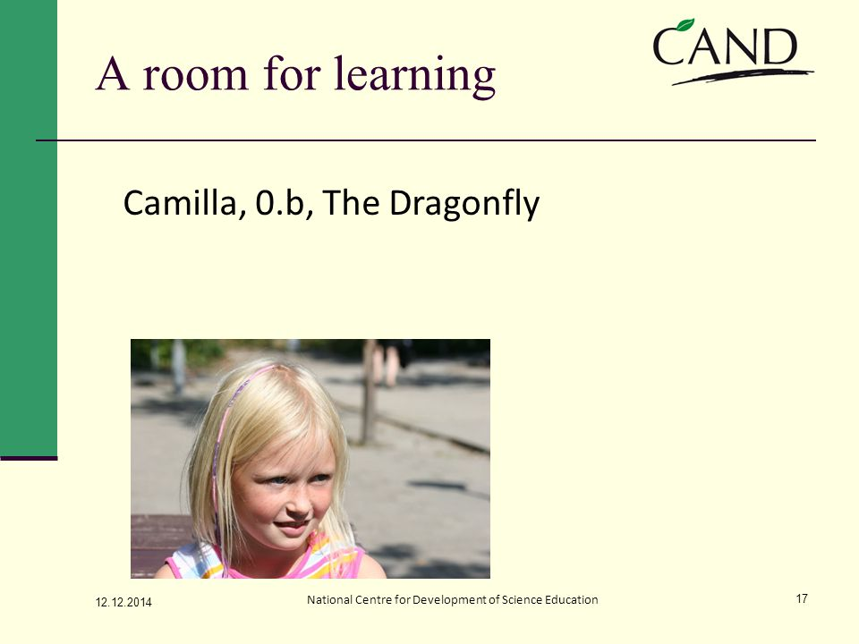 A room for learning 12.12.2014 National Centre for Development of Science Education 17 Camilla, 0.b, The Dragonfly