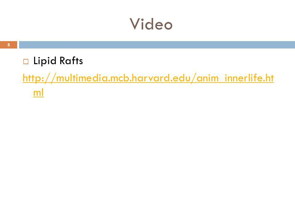 Video  Lipid Rafts http://multimedia.mcb.harvard.edu/anim_innerlife.ht ml 5