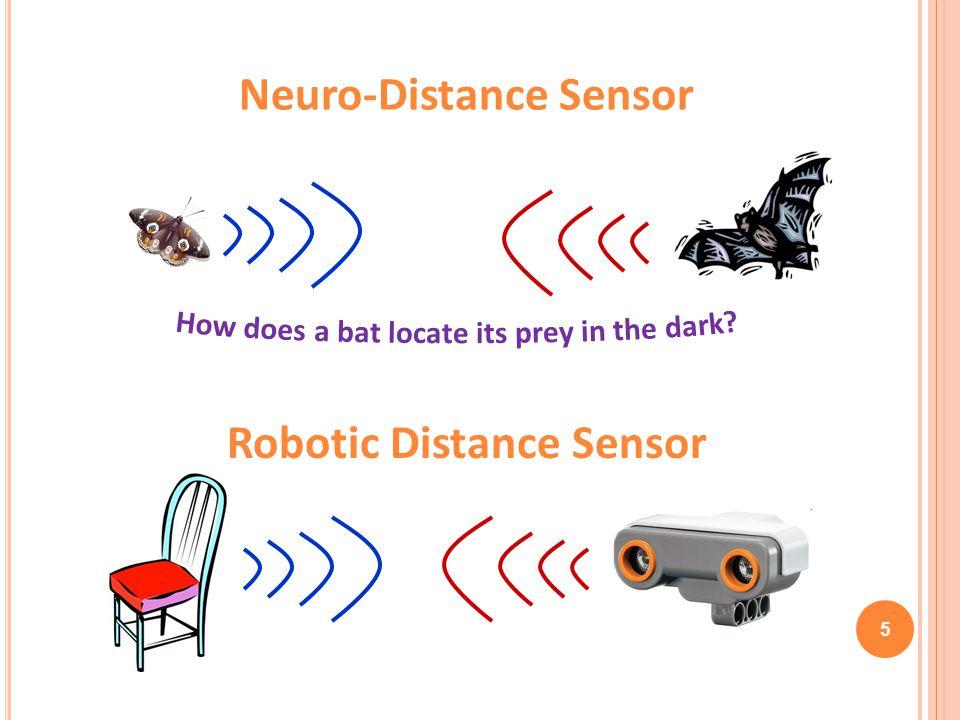 5 Neuro-Distance Sensor Robotic Distance Sensor