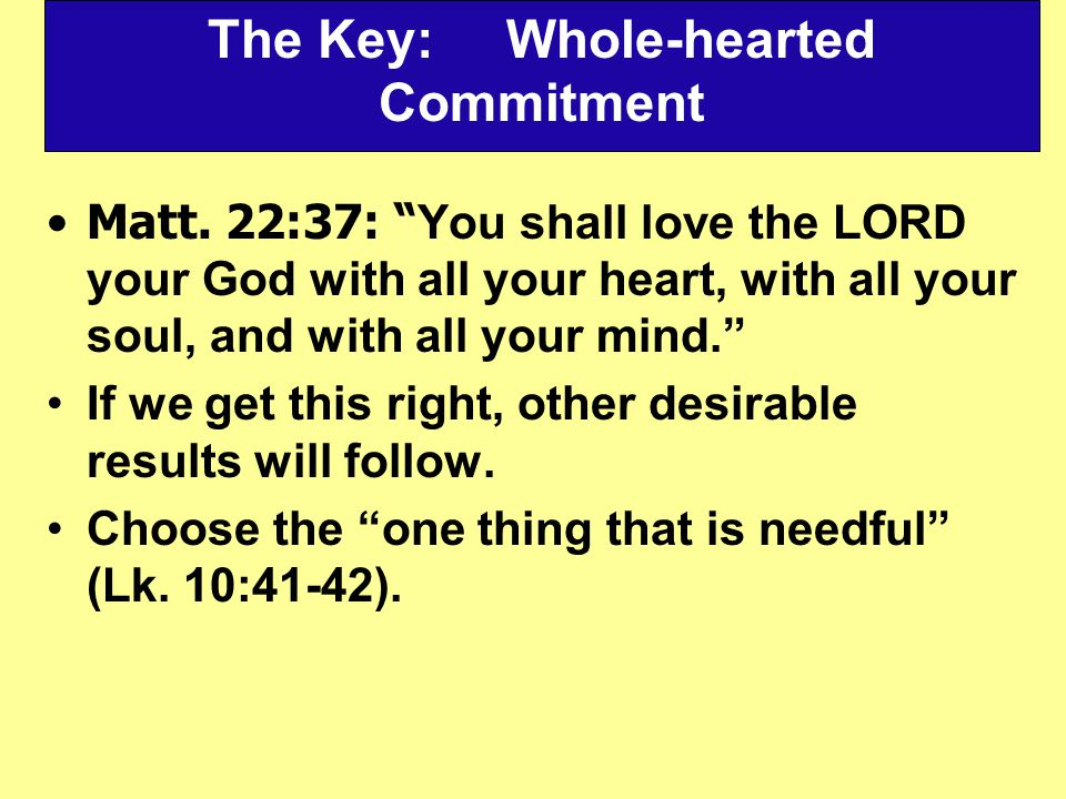 The Key: Whole-hearted Commitment Matt.