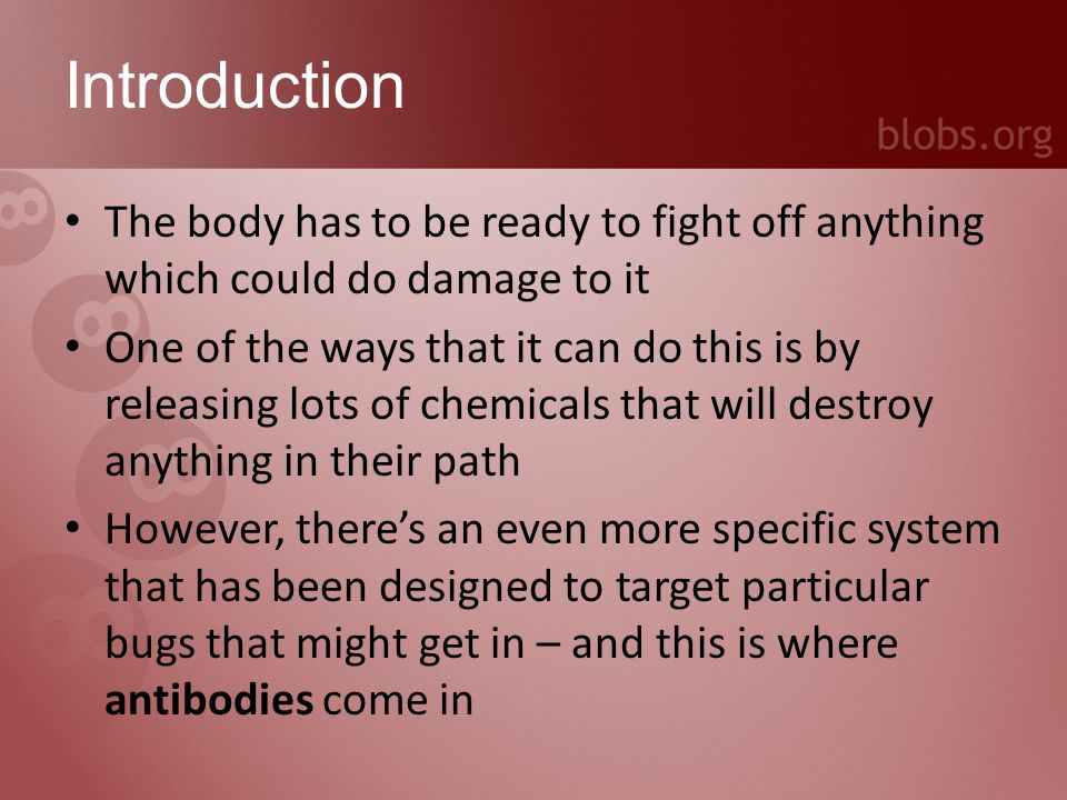 Outline What is an antibody? What does an antibody do? Types of antibodies