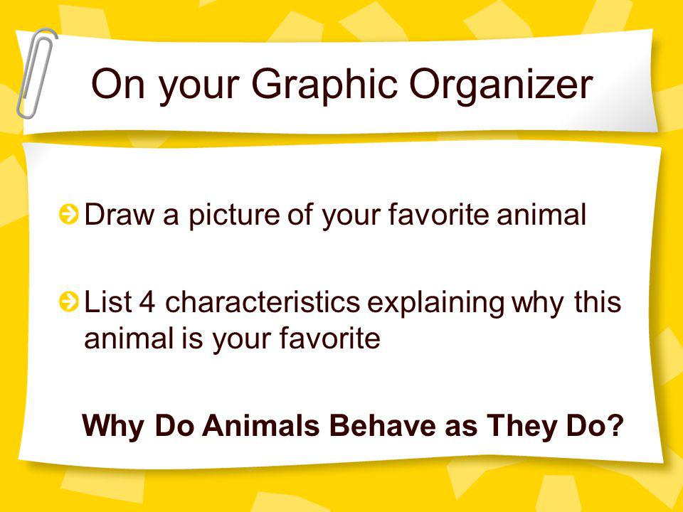 On your Graphic Organizer Draw a picture of your favorite animal List 4 characteristics explaining why this animal is your favorite Why Do Animals Behave as They Do?