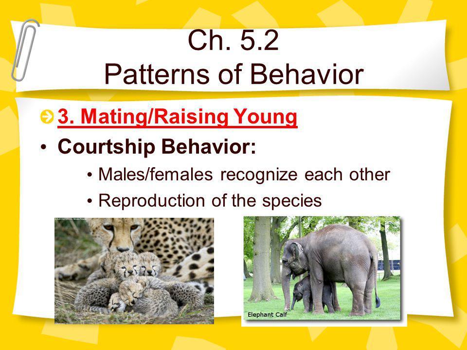 Ch. 5.2 Patterns of Behavior 3.