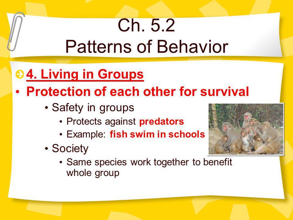 Ch. 5.2 Patterns of Behavior 4.