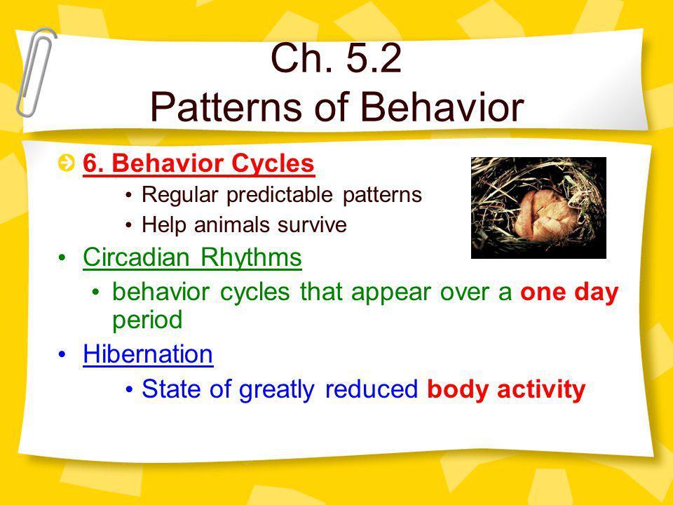 Ch. 5.2 Patterns of Behavior 6.