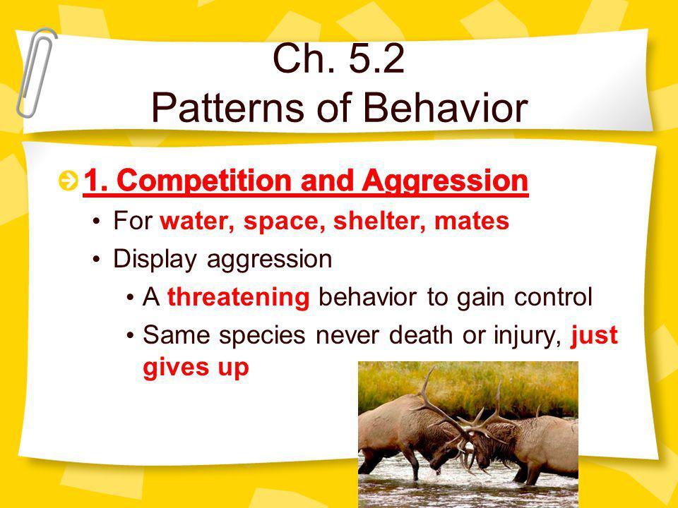 Ch. 5.2 Patterns of Behavior
