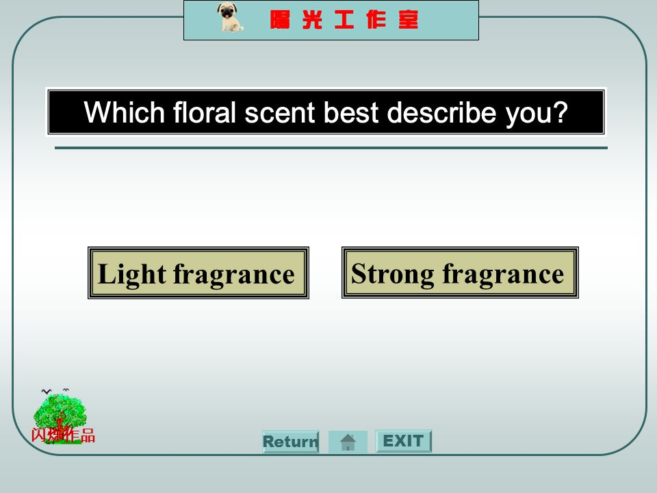 EXIT 闪烁作品 Which floral scent best describe you Light fragrance Strong fragrance Return