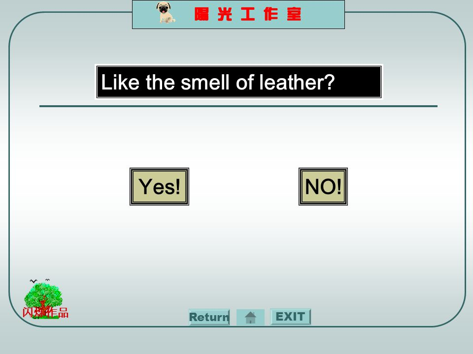 EXIT 闪烁作品 Like the smell of leather Yes!NO! Return