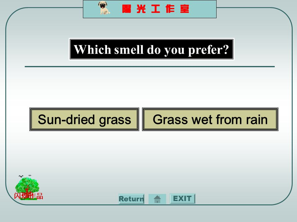 EXIT 闪烁作品 Which smell do you prefer Sun-dried grassGrass wet from rain Return