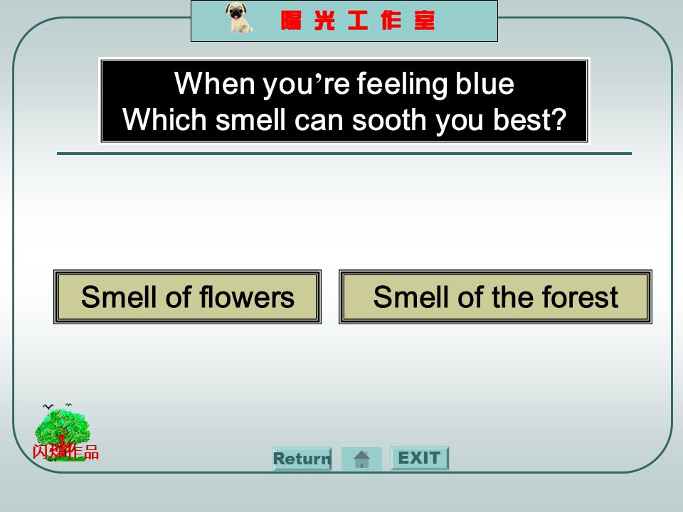 EXIT 闪烁作品 When you ' re feeling blue Which smell can sooth you best.