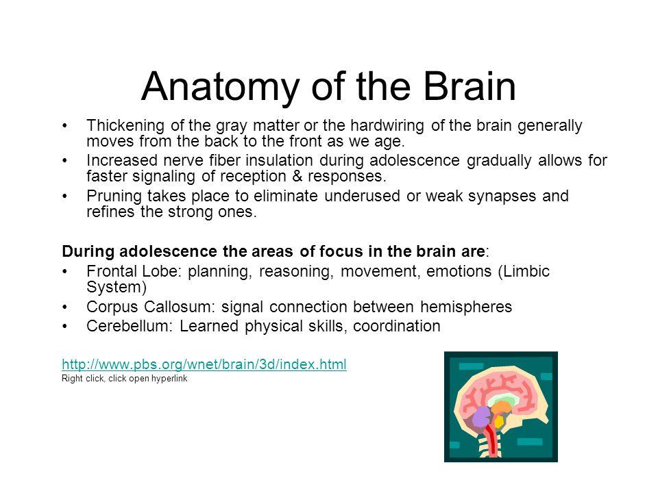 How Does Sleep Impact Learning.