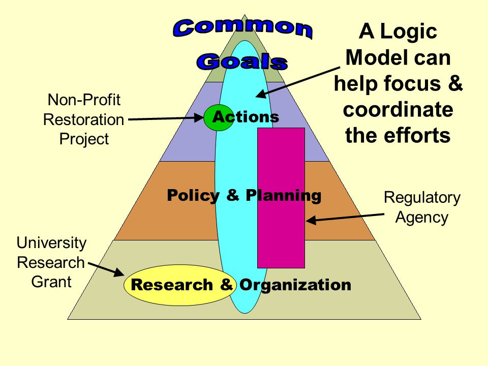 Policy & Planning Research & Organization A Logic Model can help focus & coordinate the efforts Non-Profit Restoration Project University Research Gra