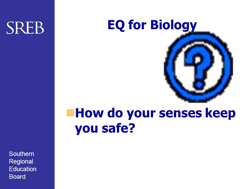 Southern Regional Education Board EQ for Biology How do your senses keep you safe?